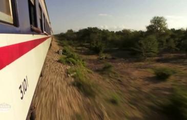 Des trains pas comme les autres : Tanzanie