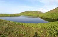 Saint-Pierre-et-Miquelon: La nature à l'état sauvage